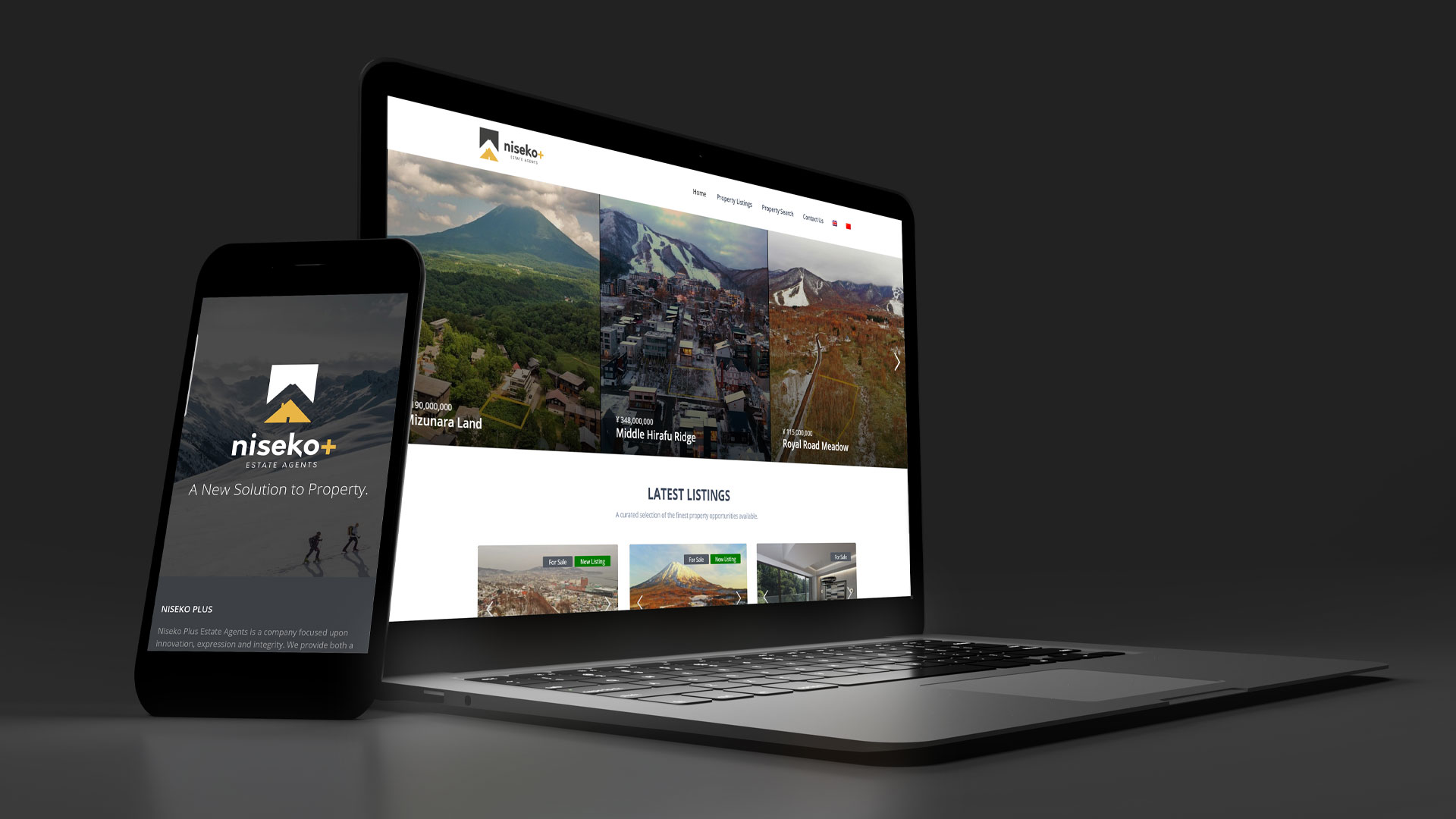 The website for Niseko+ Estate agents shows the application of good branding to the front page